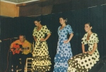Photo - Flamenco06032012_0001